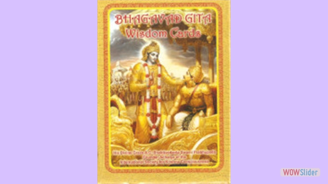 Wisdom Cards for Daily Guidance