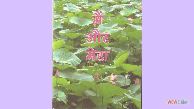 Hindi  I & Mine